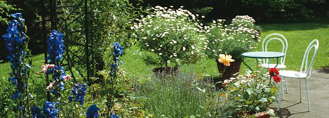 gartenbau Pflanzungen