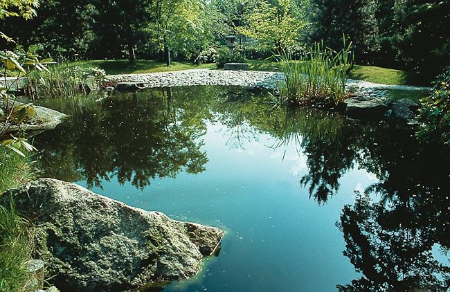 Wasser und Licht im Garten